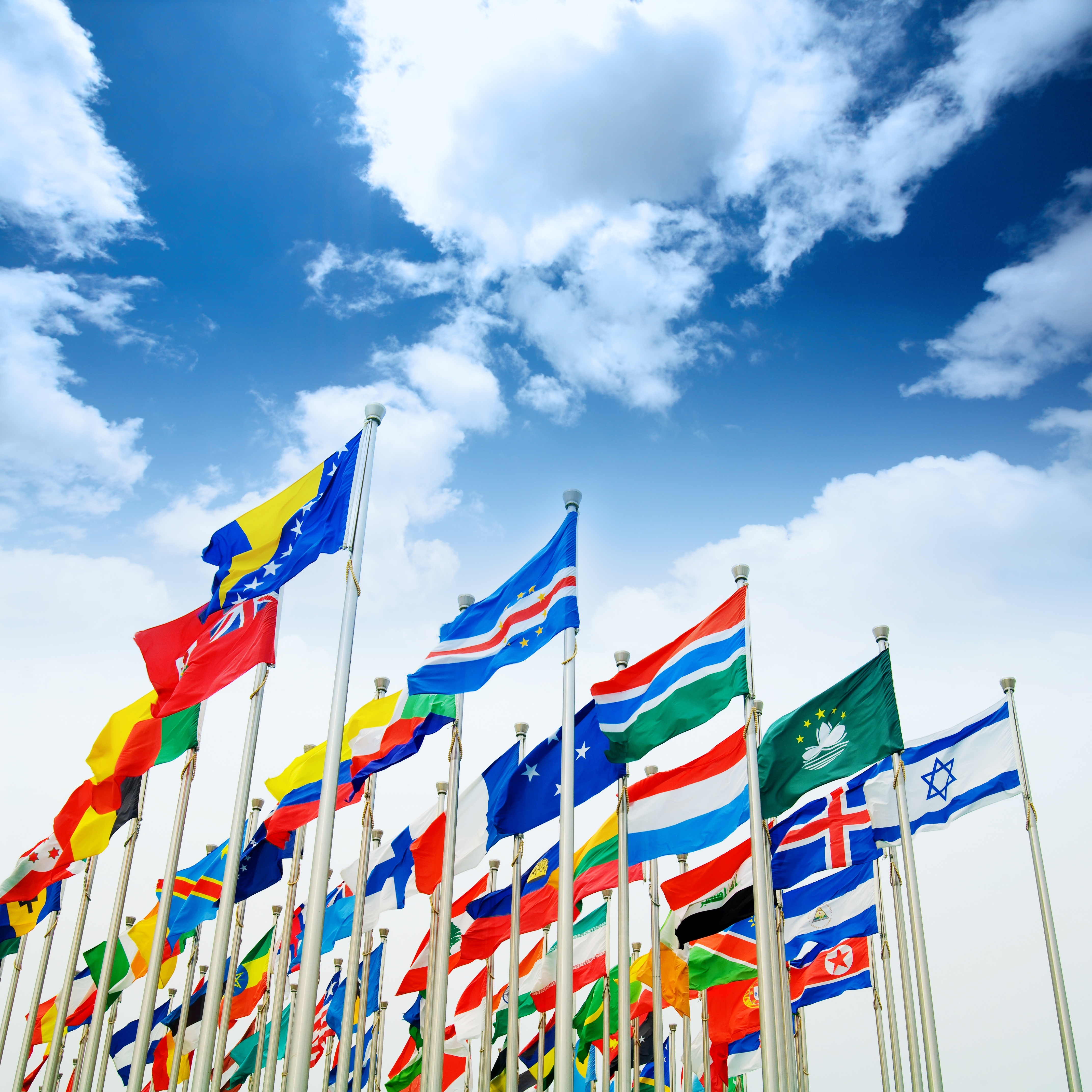 La red SFAI incorpora 89 nuevos asociados en UK, Canadá y los países asiáticos.