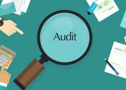 Header Servicio Auditoria
