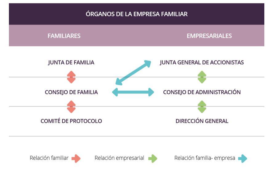 Estructuras de gobierno de la empresa familiar